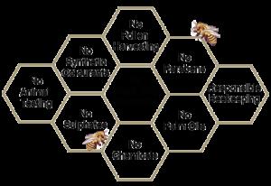 Bee natural image