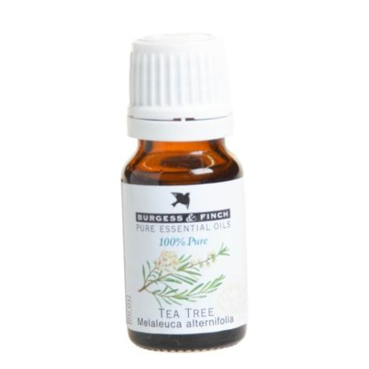Burgess and Finch tea tree essential oil