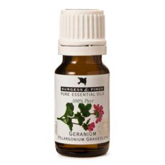 Burgess and Finch Geranium essential oil