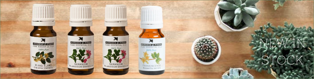 new in stock essential oils banner